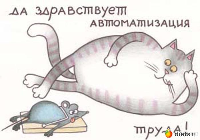 Текст Да здравствует автоматизация труда!, довольный кот лежит на полу и см